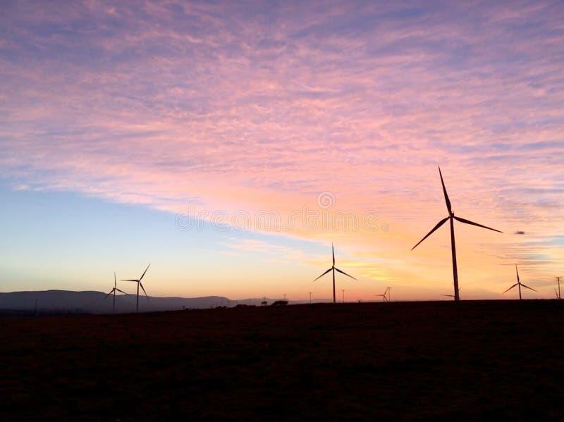Nascer do sol da manhã das turbinas eólicas imagem de stock