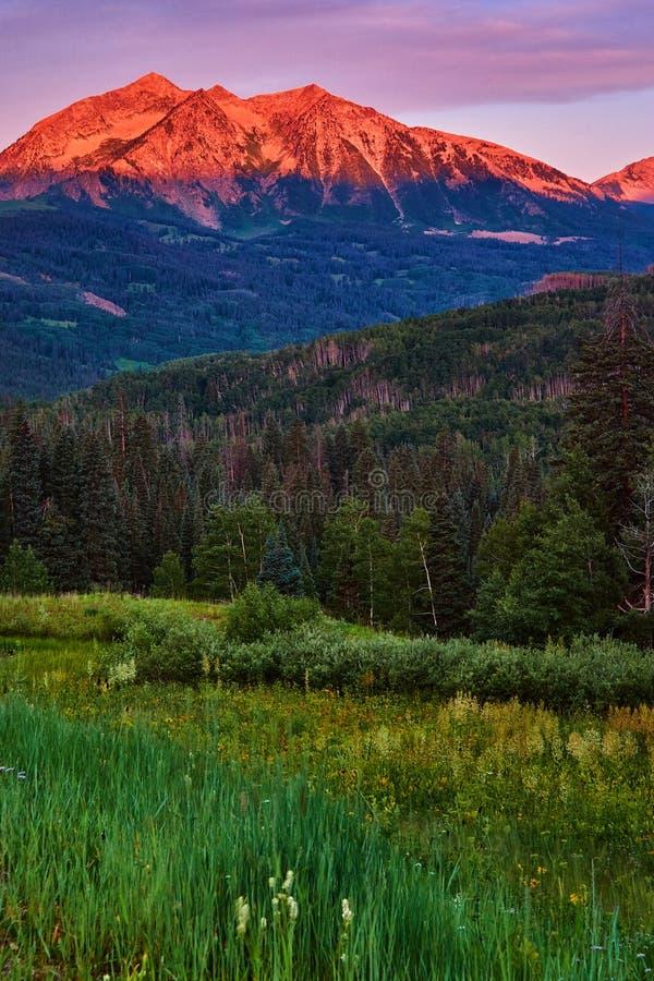 Nascer do sol da montanha de Beckwith em Colorado imagem de stock royalty free