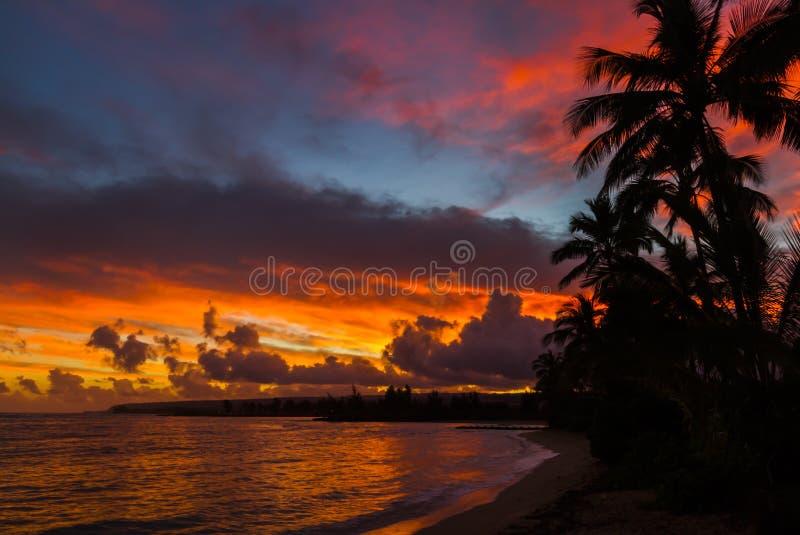 Nascer do sol de Havaí fotos de stock