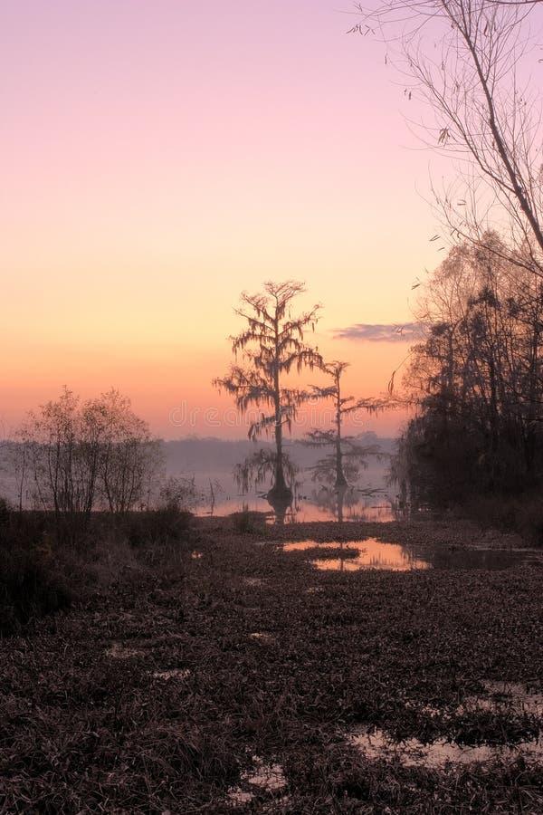 Nascer do sol de Martin do lago foto de stock