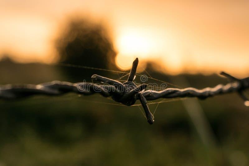 Nascer do sol do amanhecer imagem de stock royalty free