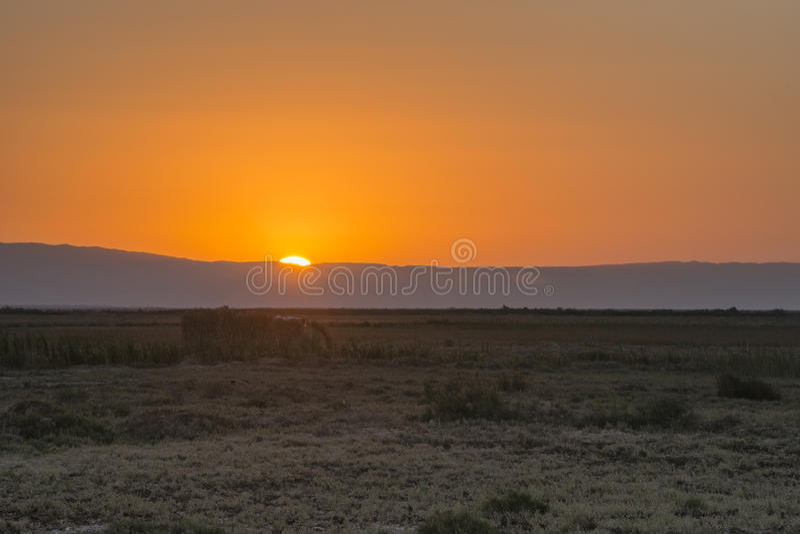 Nascer do sol do deserto fotografia de stock
