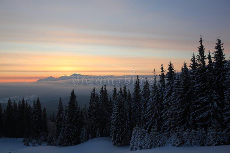 Download Nascer Do Sol Do Inverno Nas Montanhas Imagem de Stock - Imagem de vidoeiro, floresta: 29836275