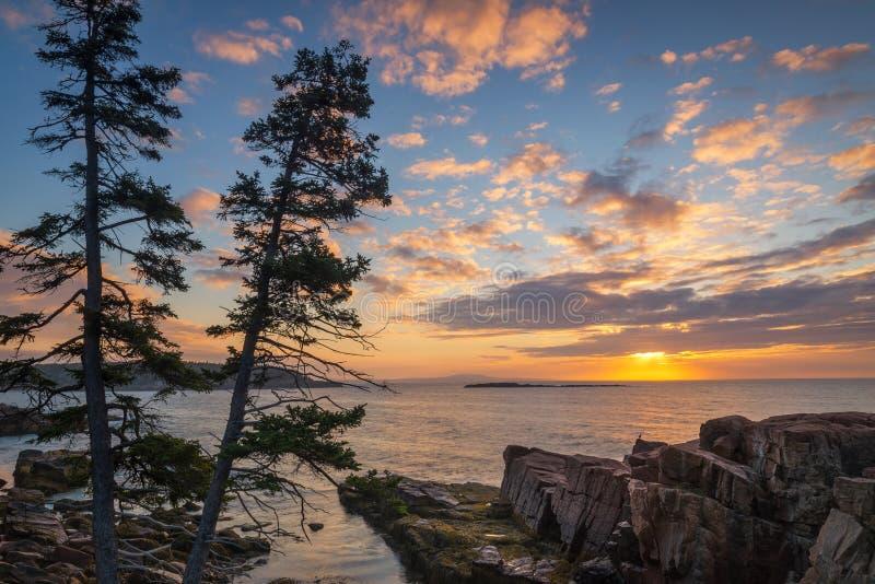 Nascer do sol do parque nacional do Acadia imagem de stock