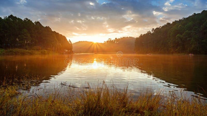 Nascer do sol do por do sol da paisagem fotografia de stock royalty free