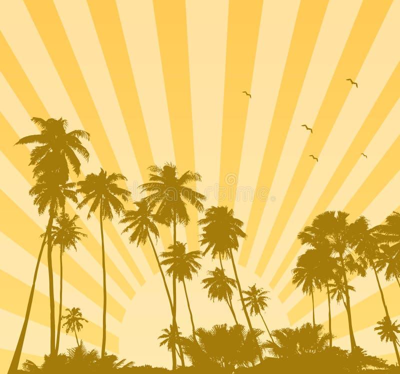 Nascer do sol do verão com palmas ilustração do vetor