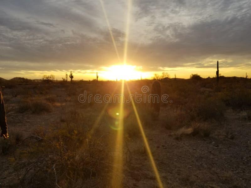 Nascer do sol dourado do deserto fotos de stock royalty free