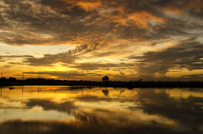 Nascer do sol dourado na manhã imagens de stock