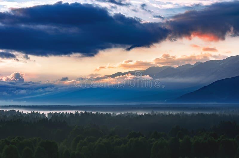 Nascer do sol dramático sobre montanhas de Altai, Cazaquistão, com a floresta sempre-verde grossa no primeiro plano coberto com a foto de stock royalty free