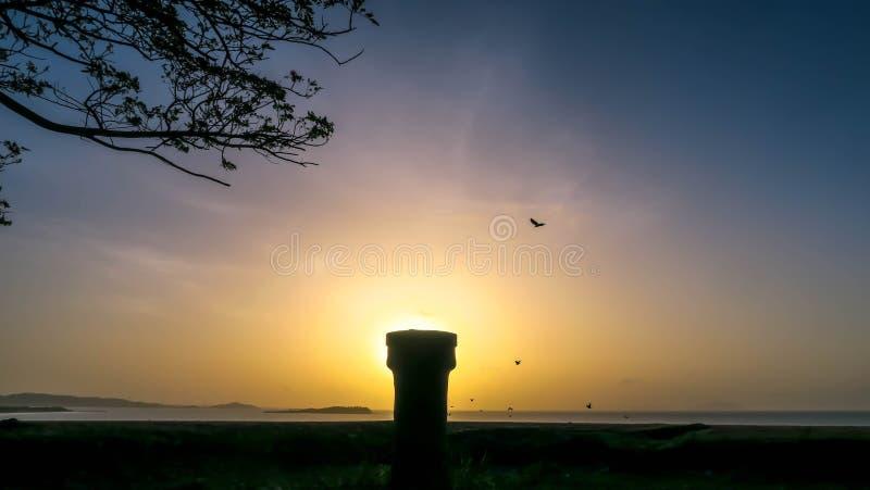 Nascer do sol e pássaros fotografia de stock royalty free