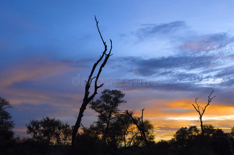 Nascer do sol em África do Sul imagens de stock