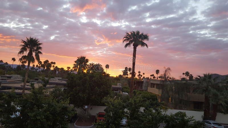 Nascer do sol em Palm Spring imagem de stock royalty free