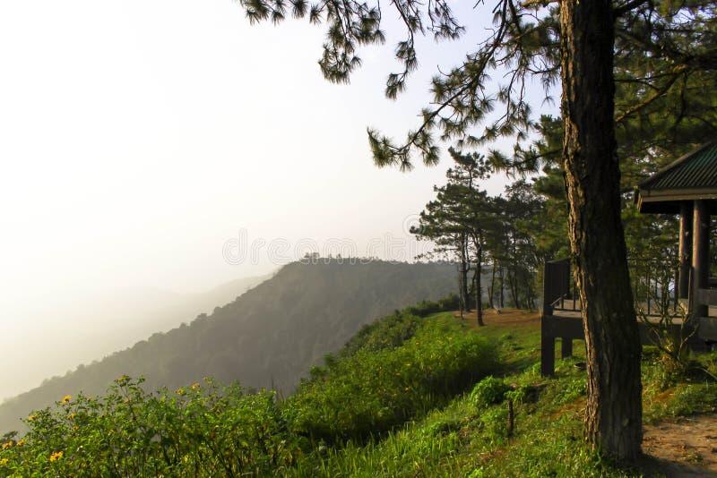Nascer do sol em Phurua imagem de stock royalty free