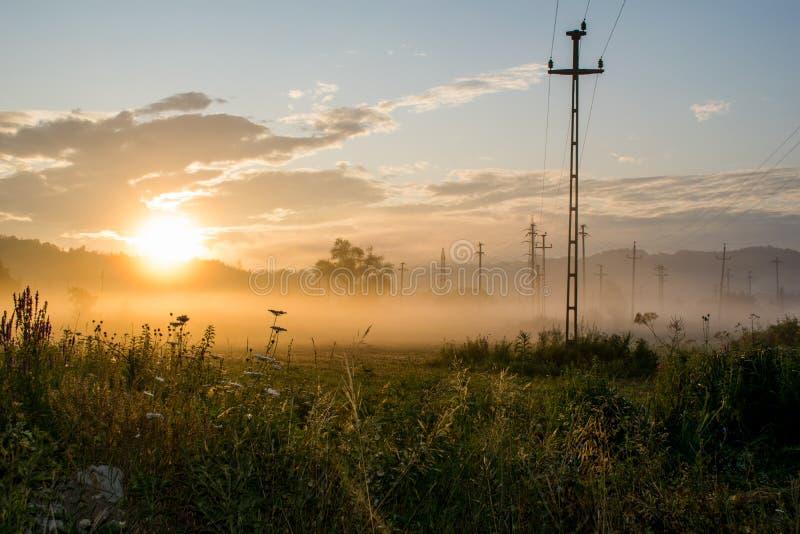 Nascer do sol em um campo com lotes da vegetação, das árvores e dos polos da eletricidade névoa a rés do chão Parece ser uma área fotos de stock royalty free