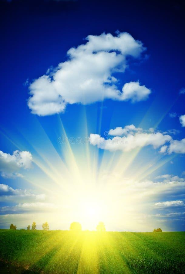 Nascer do sol em um campo verde fotos de stock royalty free