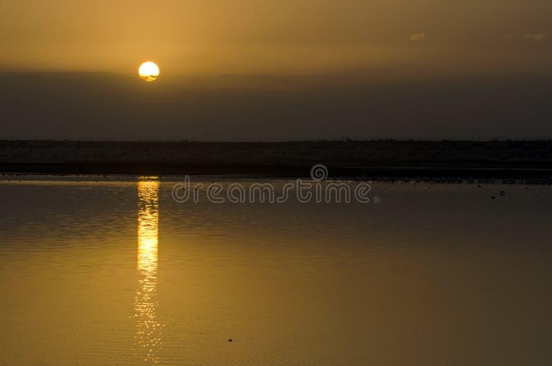 Nascer do sol em um lago imagem de stock