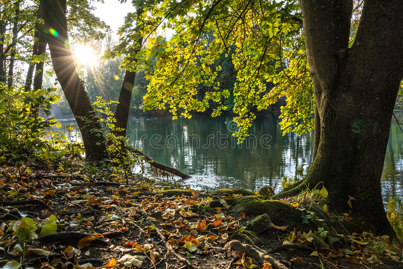 Nascer do sol em um rio com as folhas de outono coloridas fotos de stock