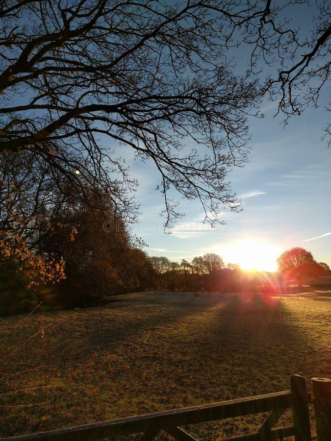 Nascer do sol em uma manhã do inverno fotografia de stock royalty free