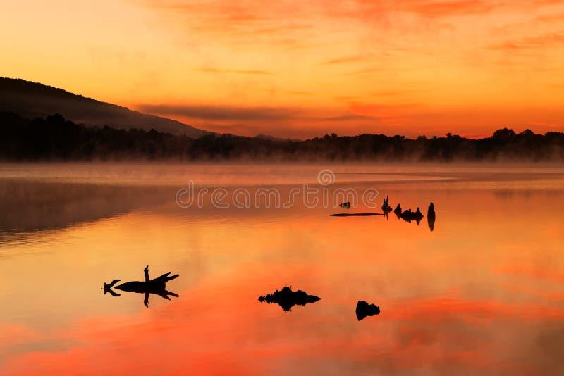 Nascer do sol enevoado no lago imagem de stock royalty free