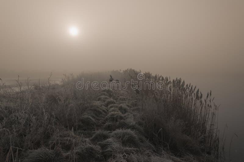 Nascer do sol enevoado sobre um lago imagem de stock