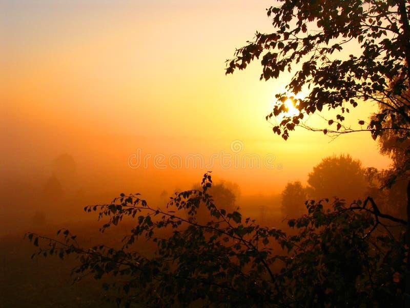 Nascer do sol fresco imagens de stock royalty free