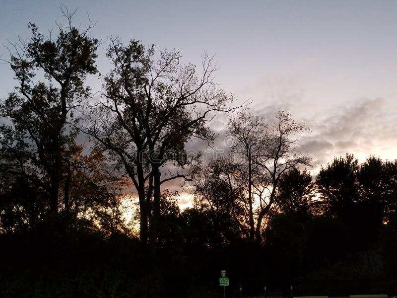 Nascer do sol frio sobre o parque fotografia de stock royalty free