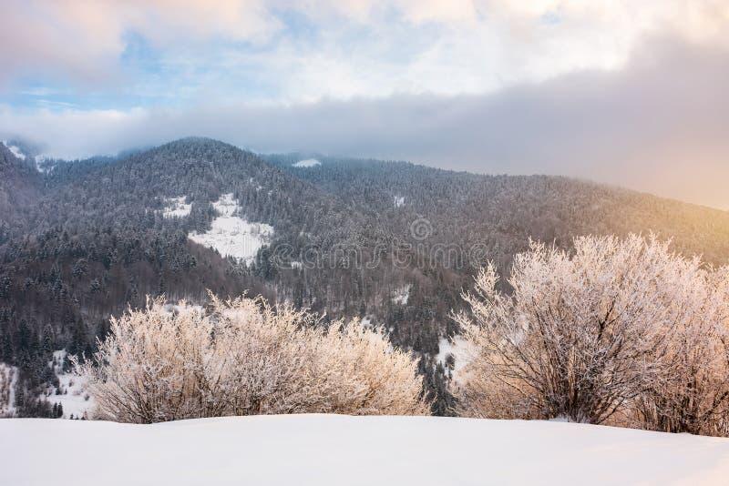 Nascer do sol lindo do inverno nas montanhas imagens de stock royalty free