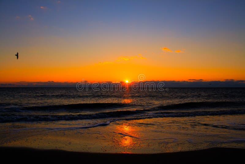 Nascer do sol na ilha de Tybee fotografia de stock royalty free