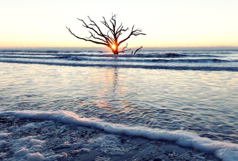 Nascer do sol na praia da baía da Botânica fotos de stock royalty free