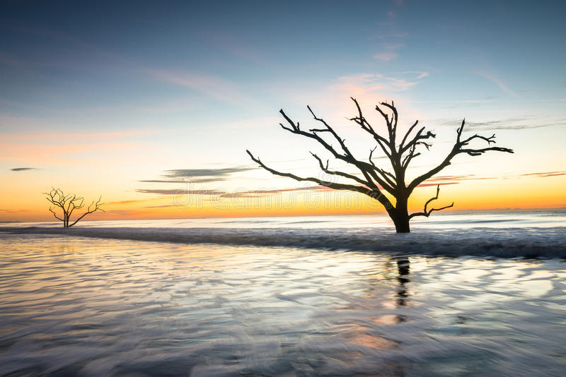 Nascer do sol na praia da baía da Botânica imagens de stock