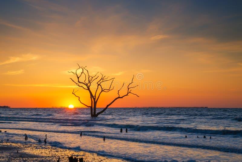 Nascer do sol na praia da baía da Botânica fotografia de stock royalty free