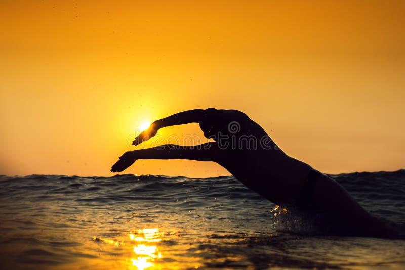Nascer do sol, natação do homem novo no mar fotografia de stock royalty free