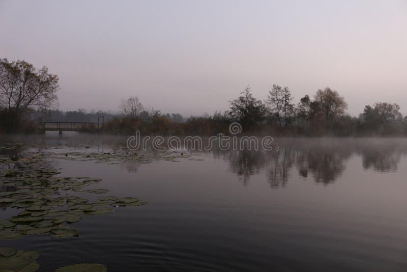 Nascer do sol nevoento em um lago do outono fotos de stock