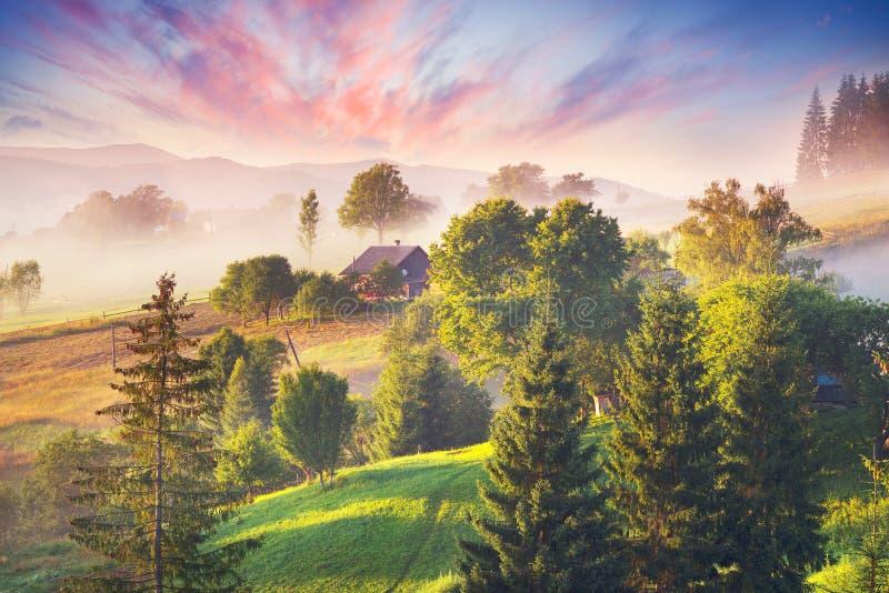Nascer do sol nevoento nas montanhas Carpathian foto de stock royalty free