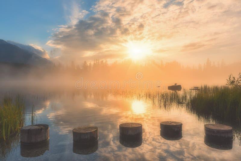 Nascer do sol nevoento surpreendente no lago alpino Strbske Pleso, paisagem ensolarada na luz suave, Tatras alto, Eslováquia fotos de stock