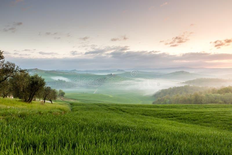 Nascer do sol no campo, Toscânia foto de stock royalty free