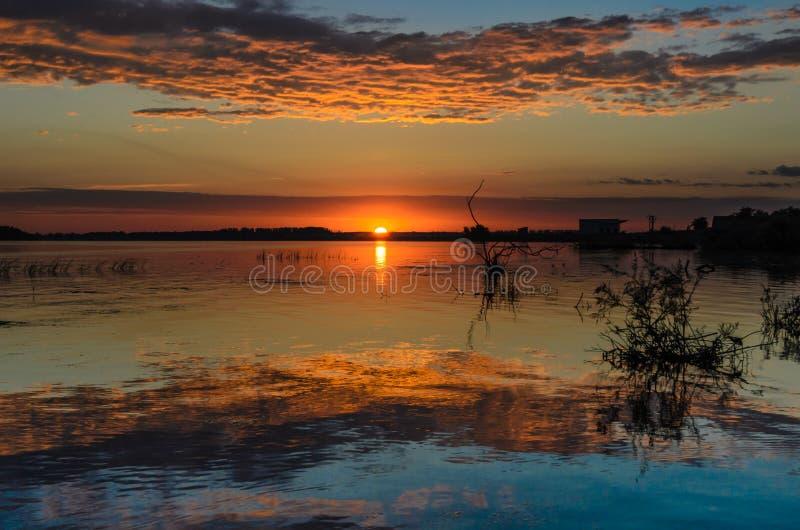 Nascer do sol no delta de Danúbio fotografia de stock royalty free