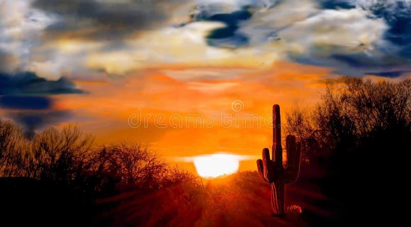 Nascer do sol no deserto do Arizona um cautus do Saguaro na silhueta fotos de stock royalty free