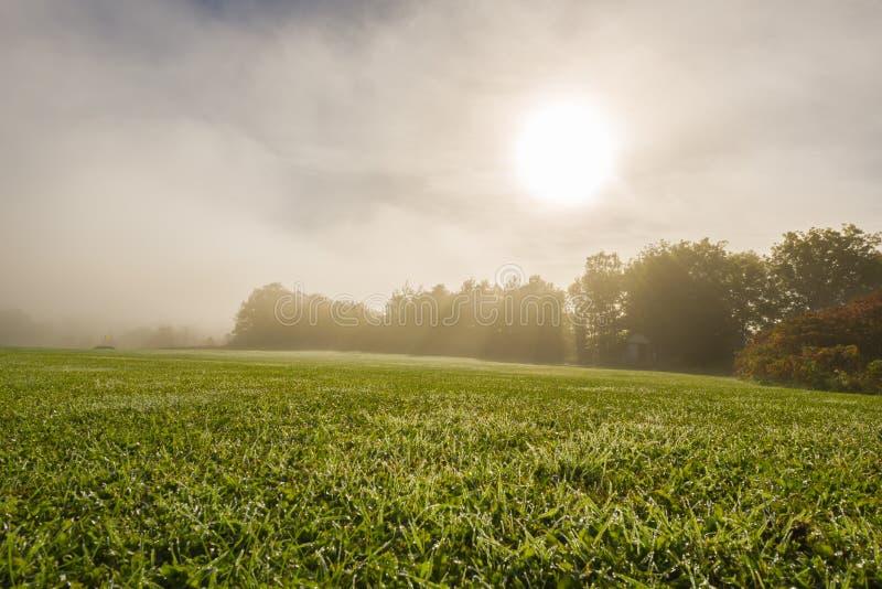 Nascer do sol no golfe na queda fotografia de stock