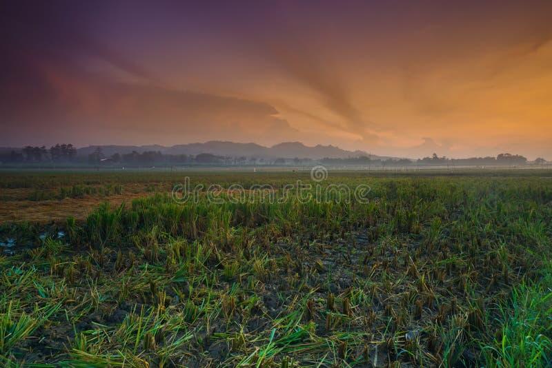 Nascer do sol no kudus do rejo do tanjung, Indonésia com campo, monte, e névoa do arroz quebrado imagens de stock royalty free