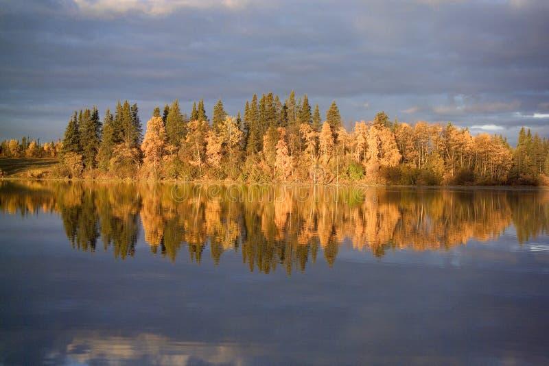 Nascer do sol no lago grizzly fotografia de stock royalty free