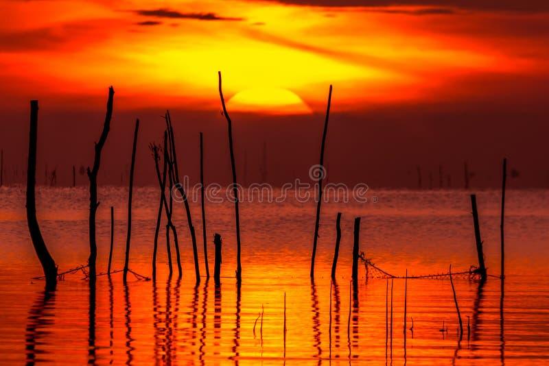 Nascer do sol no lago Phatthalung Tailândia do songkhla imagens de stock royalty free