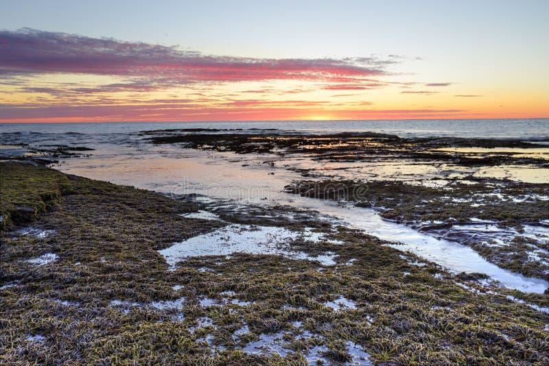 Nascer do sol no recife longo Austrália imagens de stock royalty free