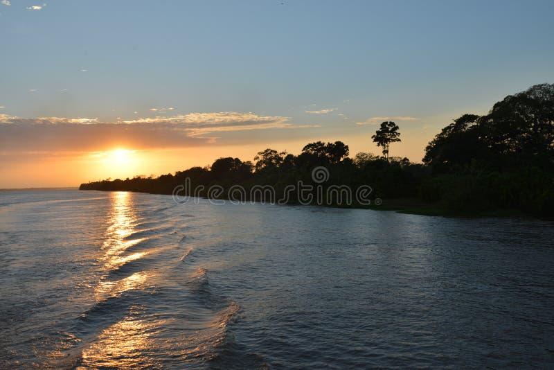 Nascer do sol no Rio Amazonas na floresta úmida brasileira fotografia de stock