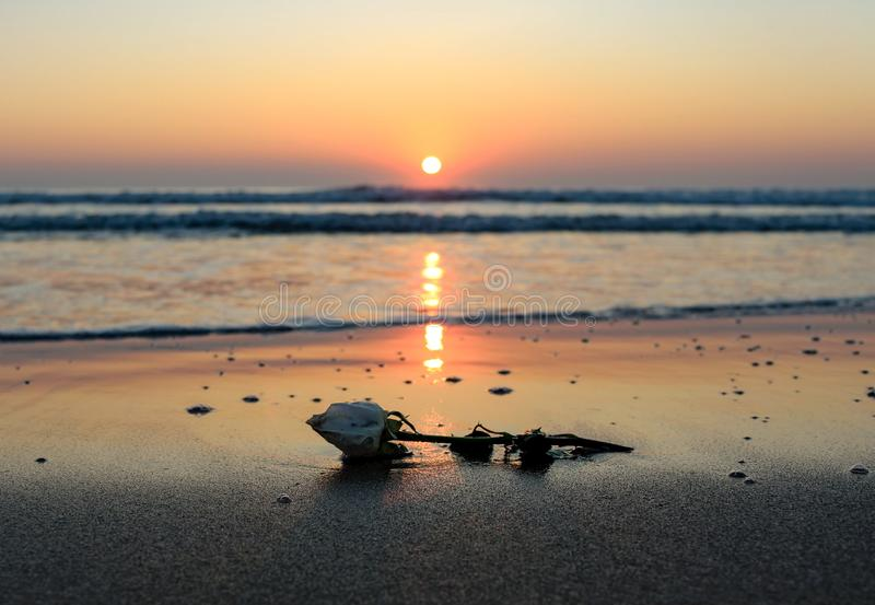 Nascer do sol romântico foto de stock royalty free