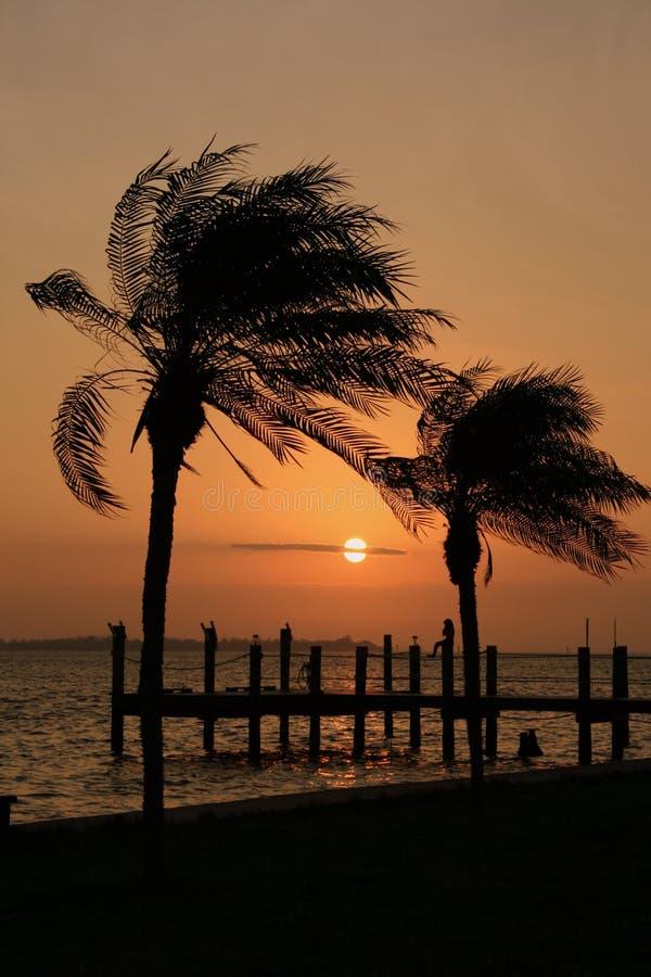 Nascer do sol Silhoutte fotos de stock royalty free