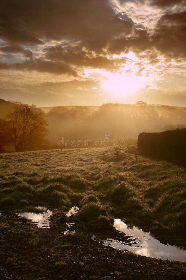 Nascer do sol sobre campos imagem de stock