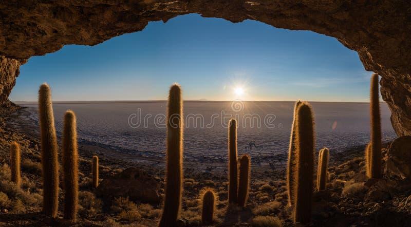 Nascer do sol sobre a ilha do cacto imagens de stock royalty free