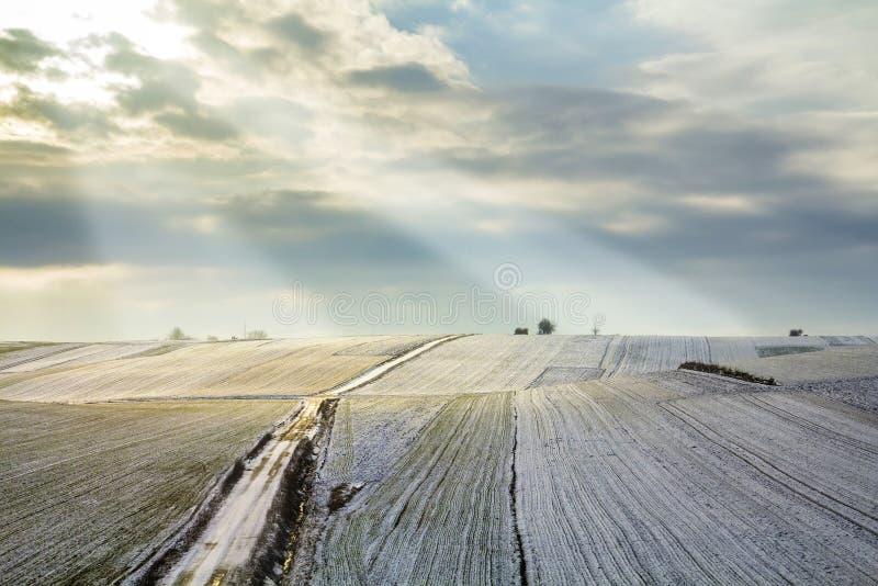 Nascer do sol sobre o campo do verde do inverno Paisagem rural fotos de stock royalty free