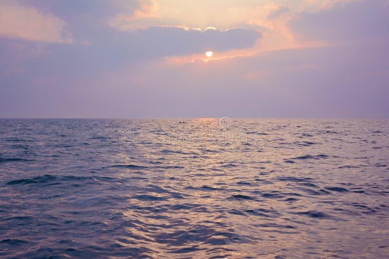 Nascer do sol sobre o Oceano Índico, Sri Lanka Flutuação de dois golfinhos foto de stock